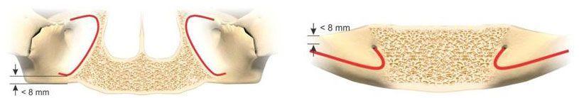 conditii-anatomice